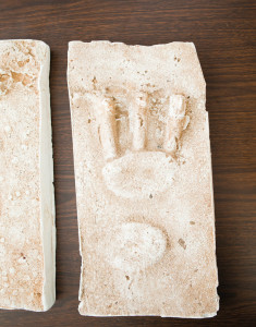 One of the plaster castings of the footprints